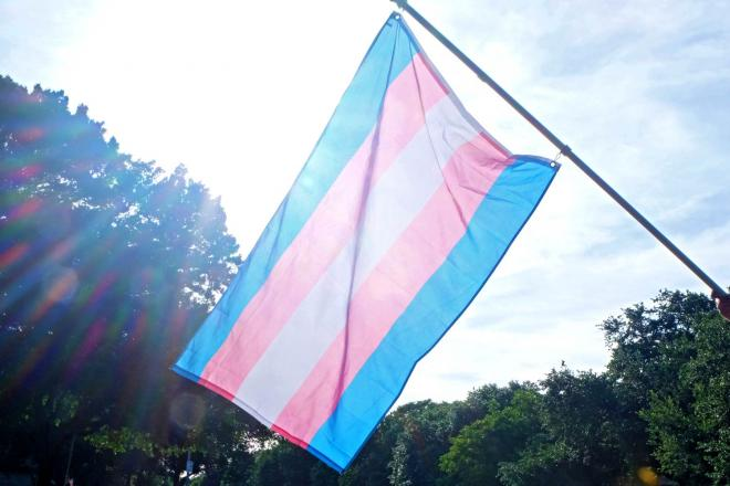 Trans solidarity flag