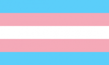 Trans rights flag
